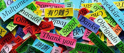 Idiomas varios
